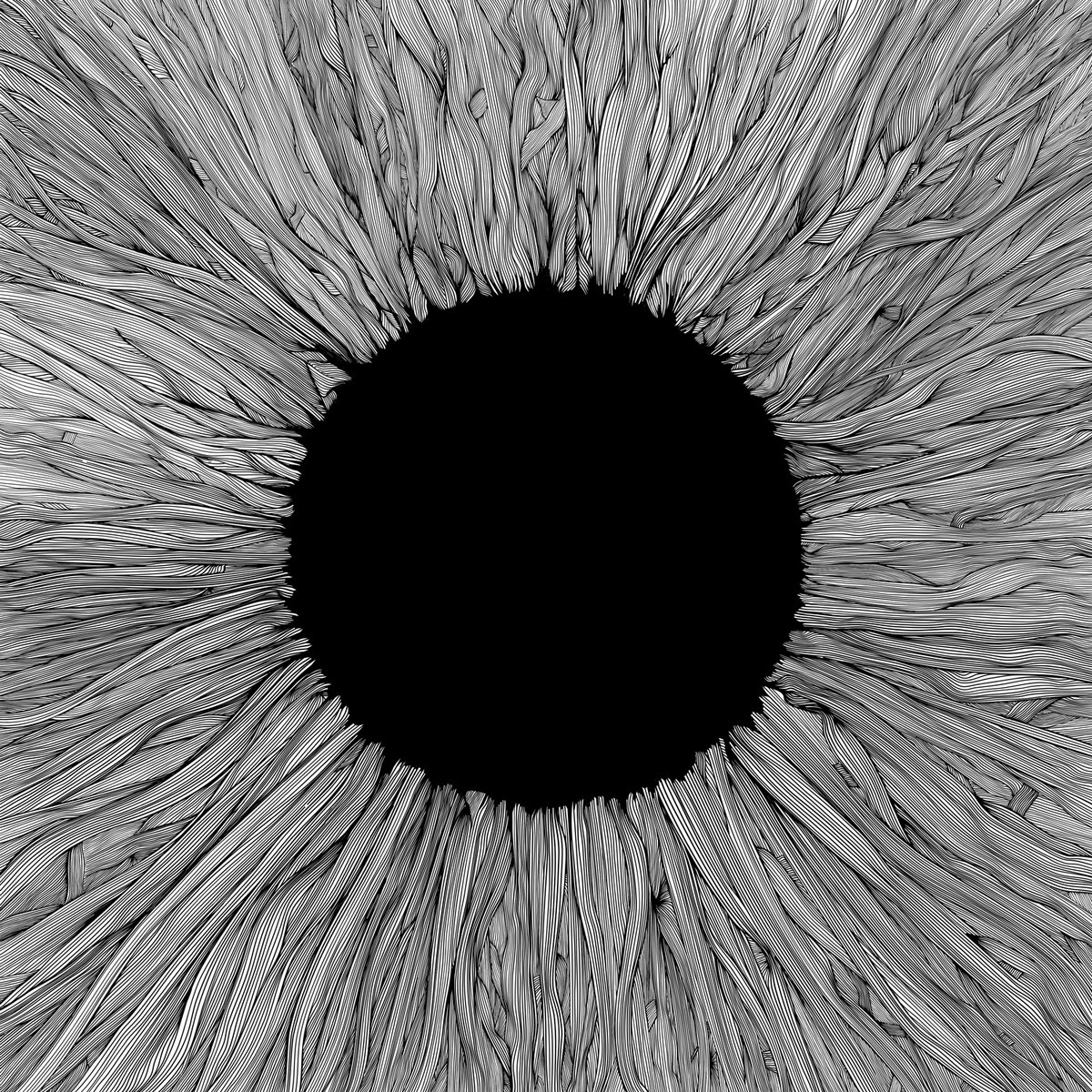VOLA: Witness